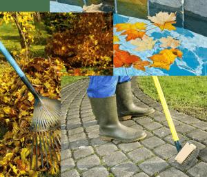 Profesionales de limpieza en Valladolid. Servicios de limpieza y mantenimiento de piscinas y jardines
