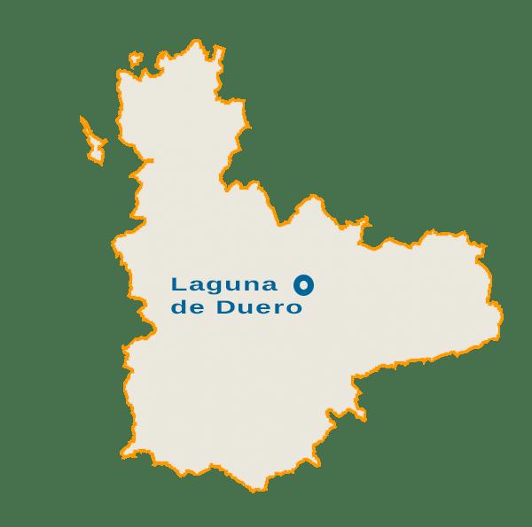 Empresa de limpieza en Laguna de Duero