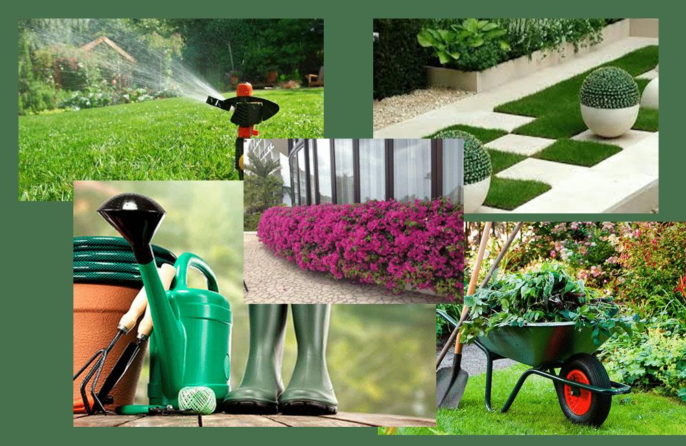 Mantenimiento y limpieza de jardines en valladolid